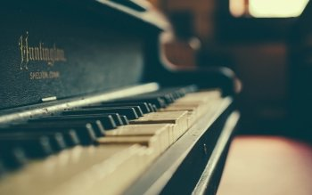 Music - Piano Wallpapers and Backgrounds ID : 452391