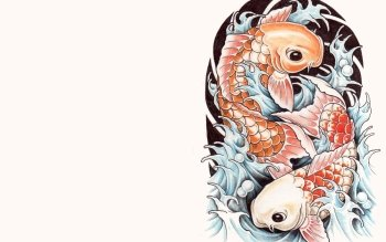 Tier - Koi Wallpapers and Backgrounds ID : 456150