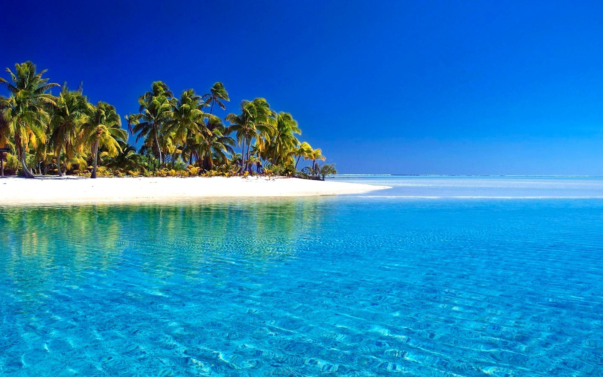Earth - Tropical  Palm Tree Beach Horizon Island Blue Sea Azure Sunny Summer Wallpaper