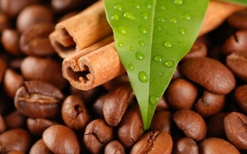 Food - Coffee Wallpapers and Backgrounds ID : 459968