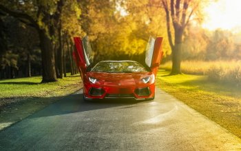 Vehicles - Lamborghini Aventador Wallpapers and Backgrounds ID : 461629