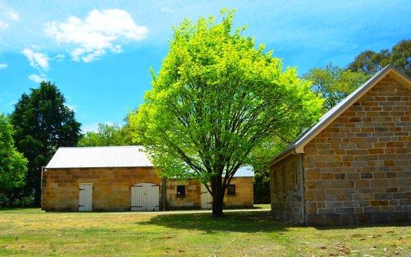 Man Made Eskbank House Building Lithgow Tree Australia HD Wallpaper | Background Image