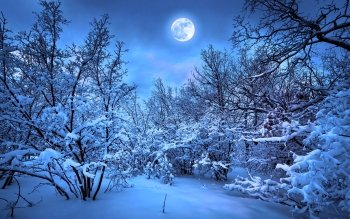 Tierra - La Luna Wallpapers and Backgrounds ID : 462370