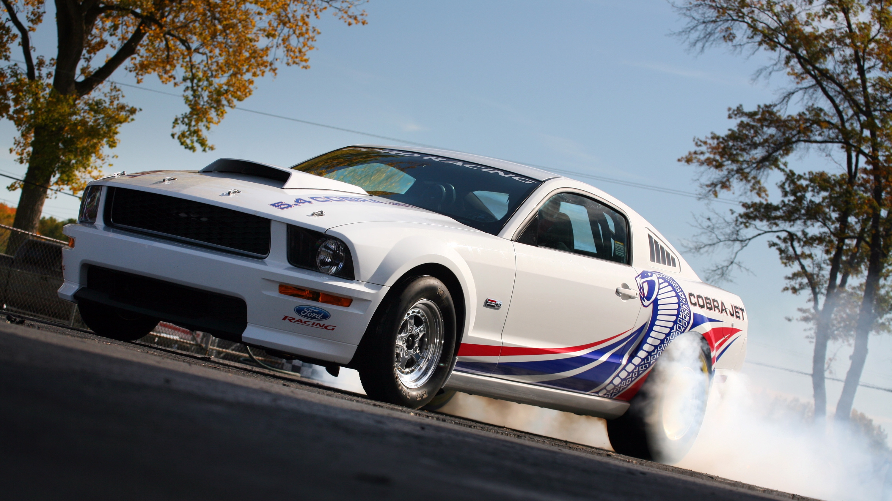 Ford Mustang Cobra Jet HD Wallpaper Background Image
