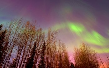 Earth - Aurora Borealis Wallpapers and Backgrounds ID : 465341