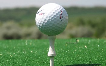 Sports - Golf Wallpapers and Backgrounds ID : 468674