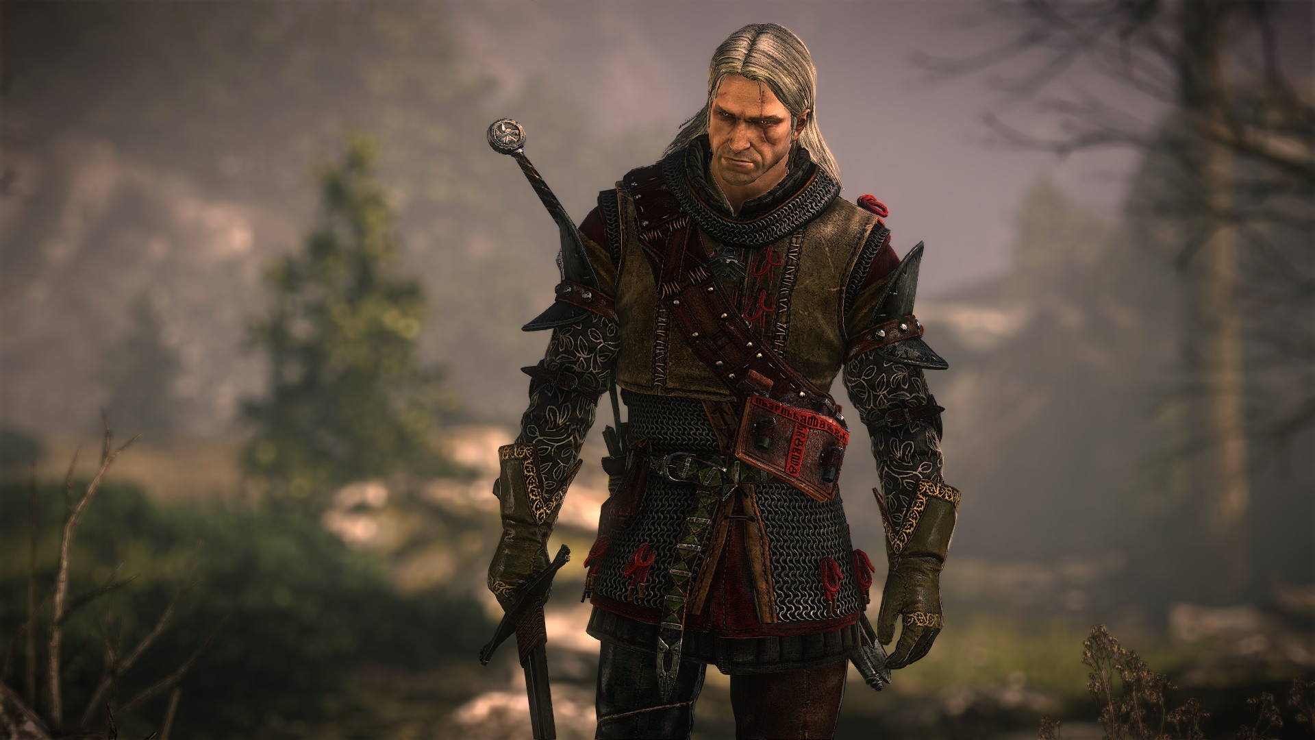 The Witcher 2: Assassins Of Kings HD Wallpaper