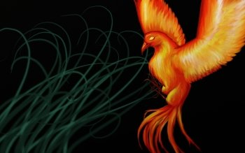 Fantasy - Phoenix Wallpapers and Backgrounds ID : 472378