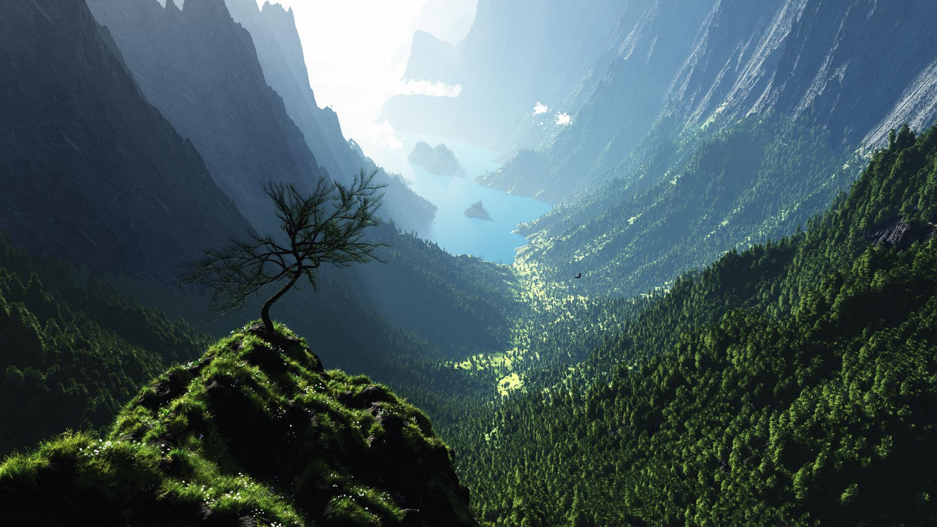 природа деревья скалы горы облака высота смотреть