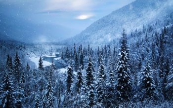 Earth - Winter Wallpapers and Backgrounds ID : 476017