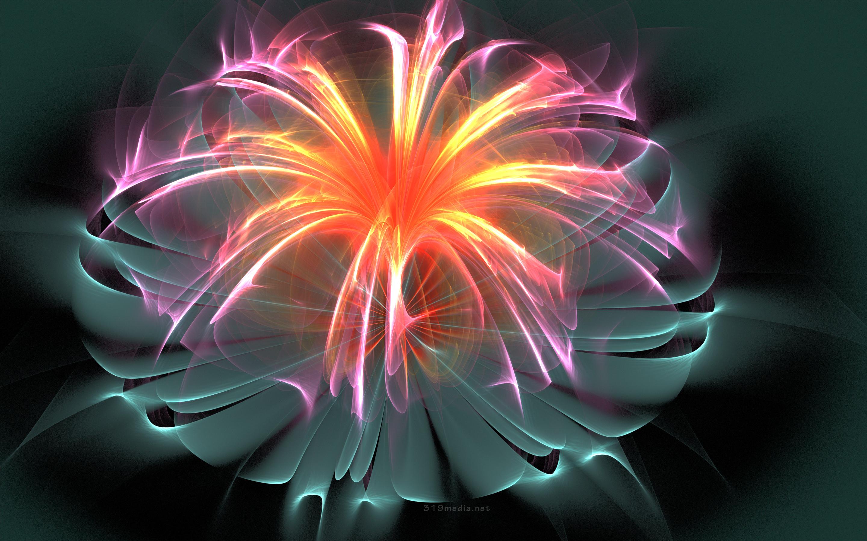 Fiber Optic Flower HD Wallpaper