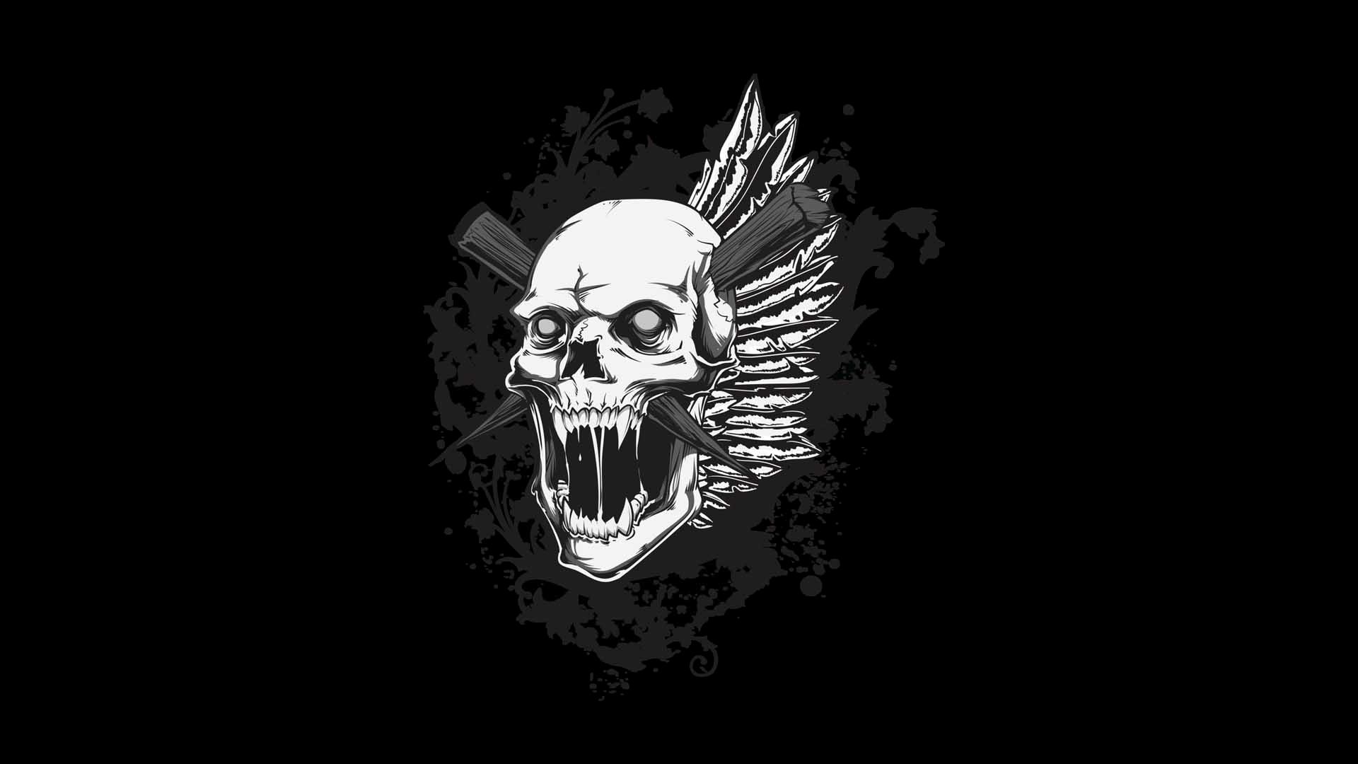 Skull HD Wallpaper   Background Image   1920x1080   ID ...
