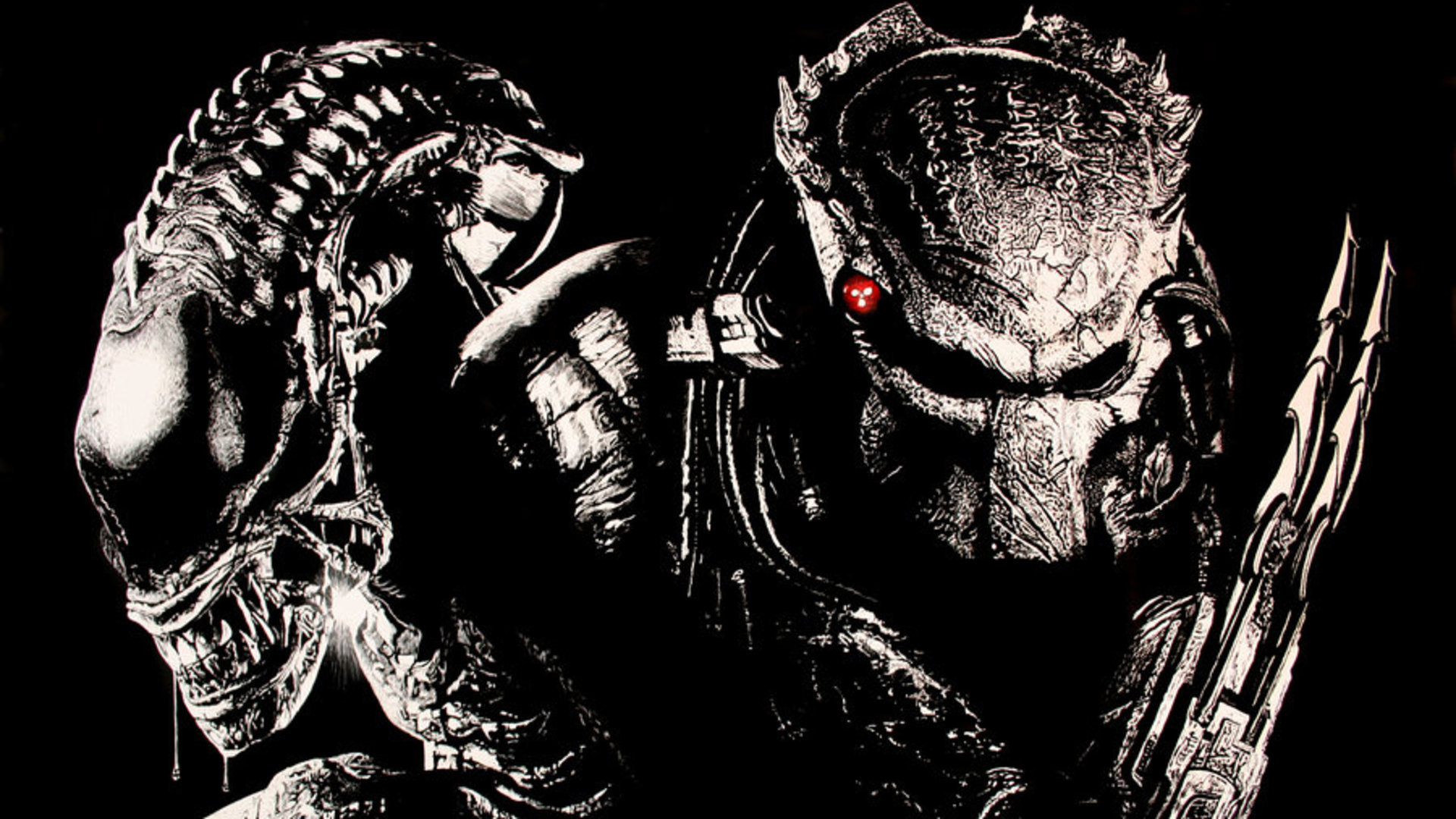 Alien Vs Predator Wallpaper Hd HD Wallpaper  Background ID