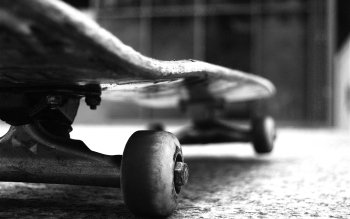 Deporte - Skateboarding Wallpapers and Backgrounds ID : 492030