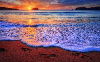 Earth - Beach Wallpapers and Backgrounds ID : 495857