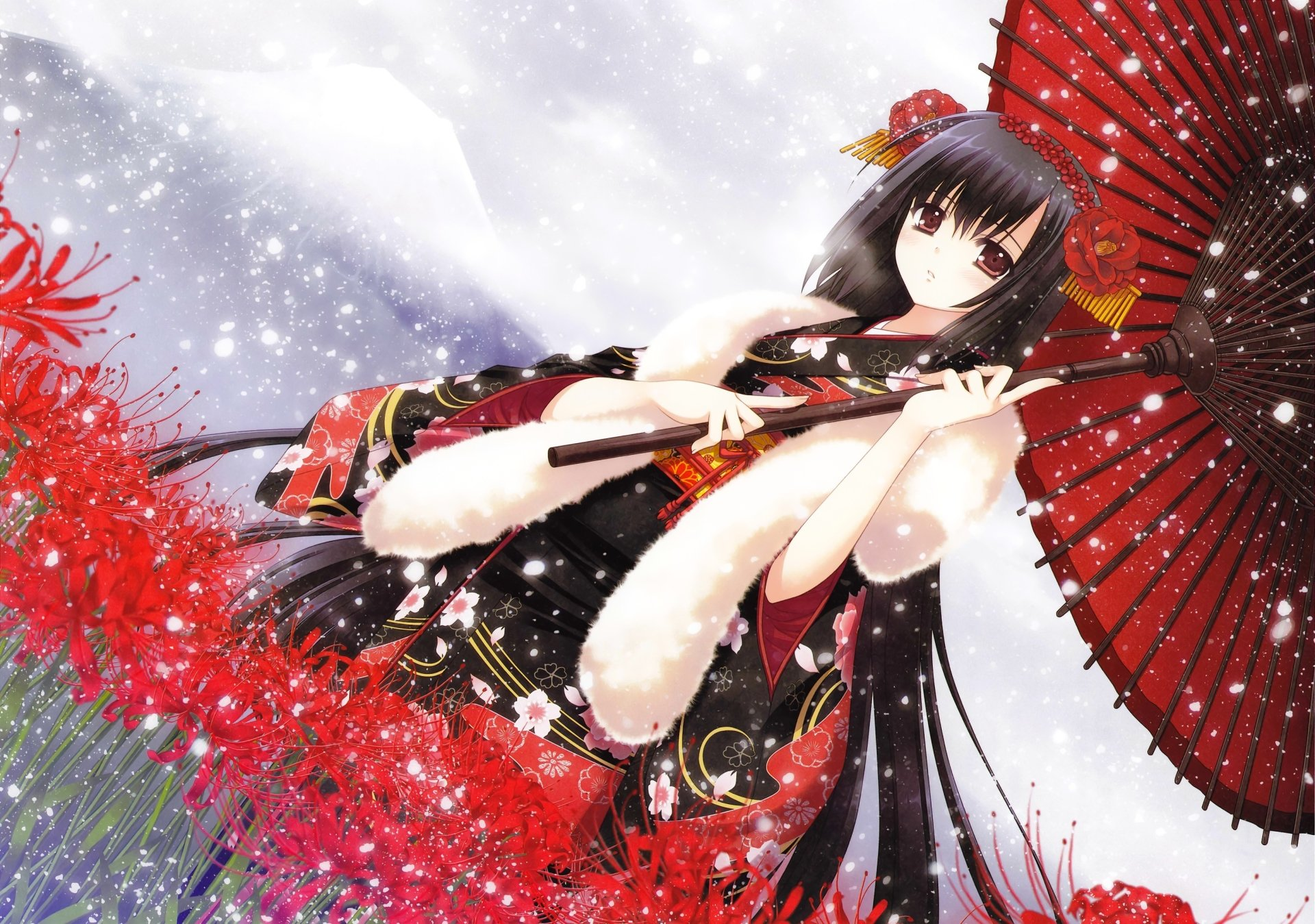Wallpapers ID:496982