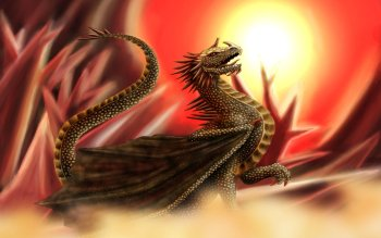 Fantasy - Dragon Wallpapers and Backgrounds ID : 497502