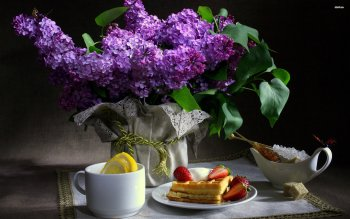 Photography - Still Life Wallpapers and Backgrounds ID : 508679