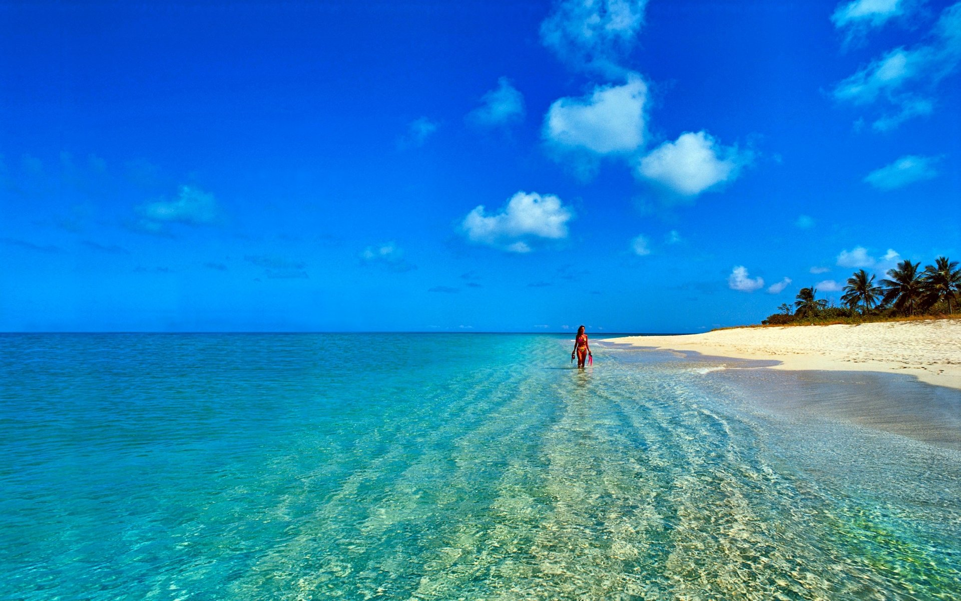 Photography - Tropical  Beach Horizon Blue Turquoise Sunny Cloud Summer Pastel Sea Wallpaper