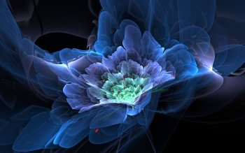Abstract - Fractal Wallpapers and Backgrounds ID : 533174