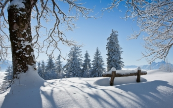 Earth - Winter Wallpapers and Backgrounds ID : 534702
