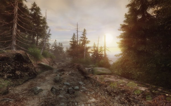 Video Game The Vanishing of Ethan Carter  HD Wallpaper | Background Image