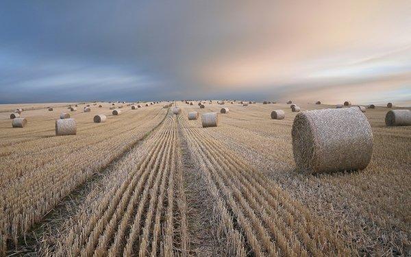 Earth Field Haystack Stubble-Field HD Wallpaper   Background Image
