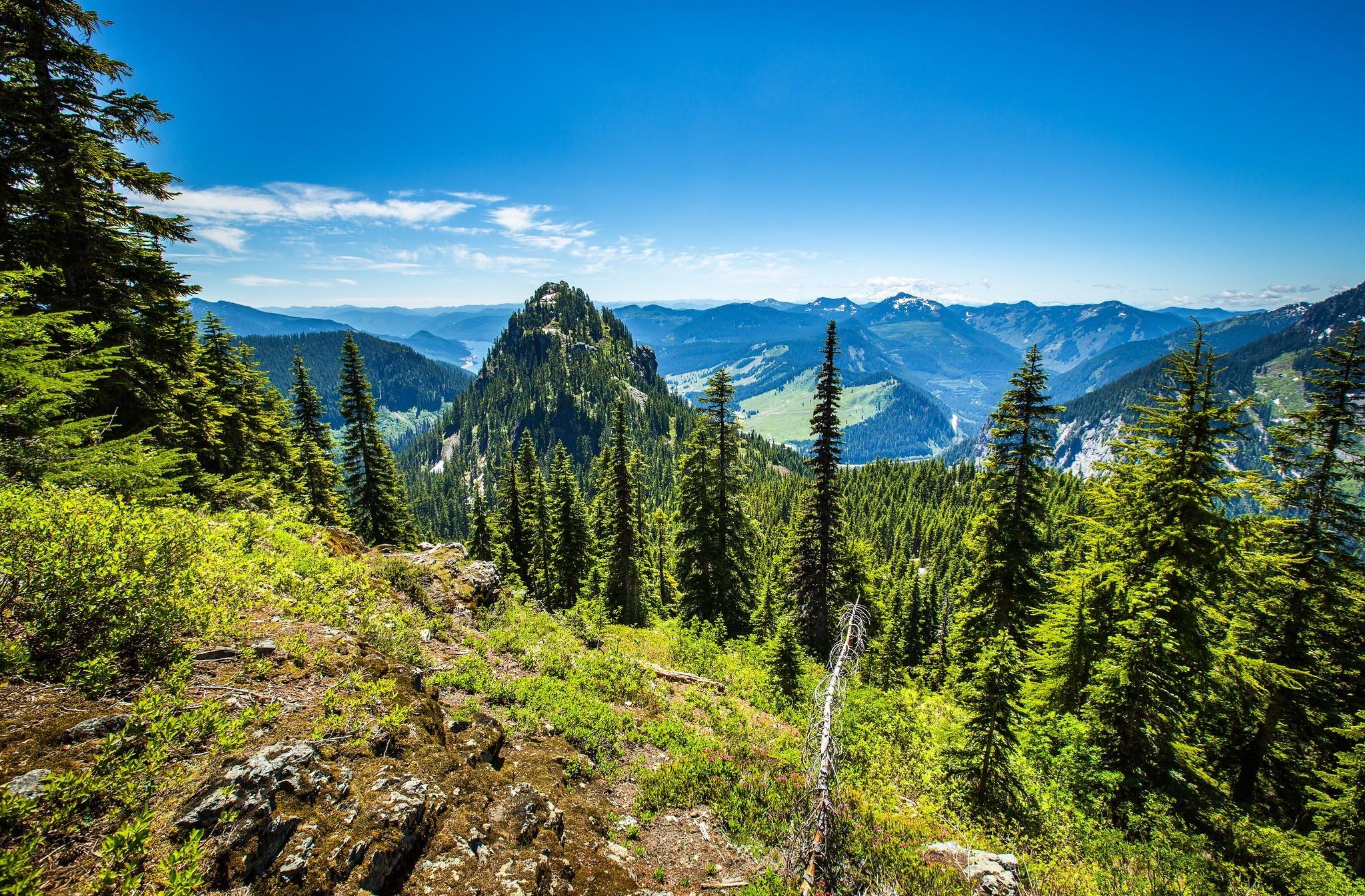 pin paysages montagne fond - photo #23