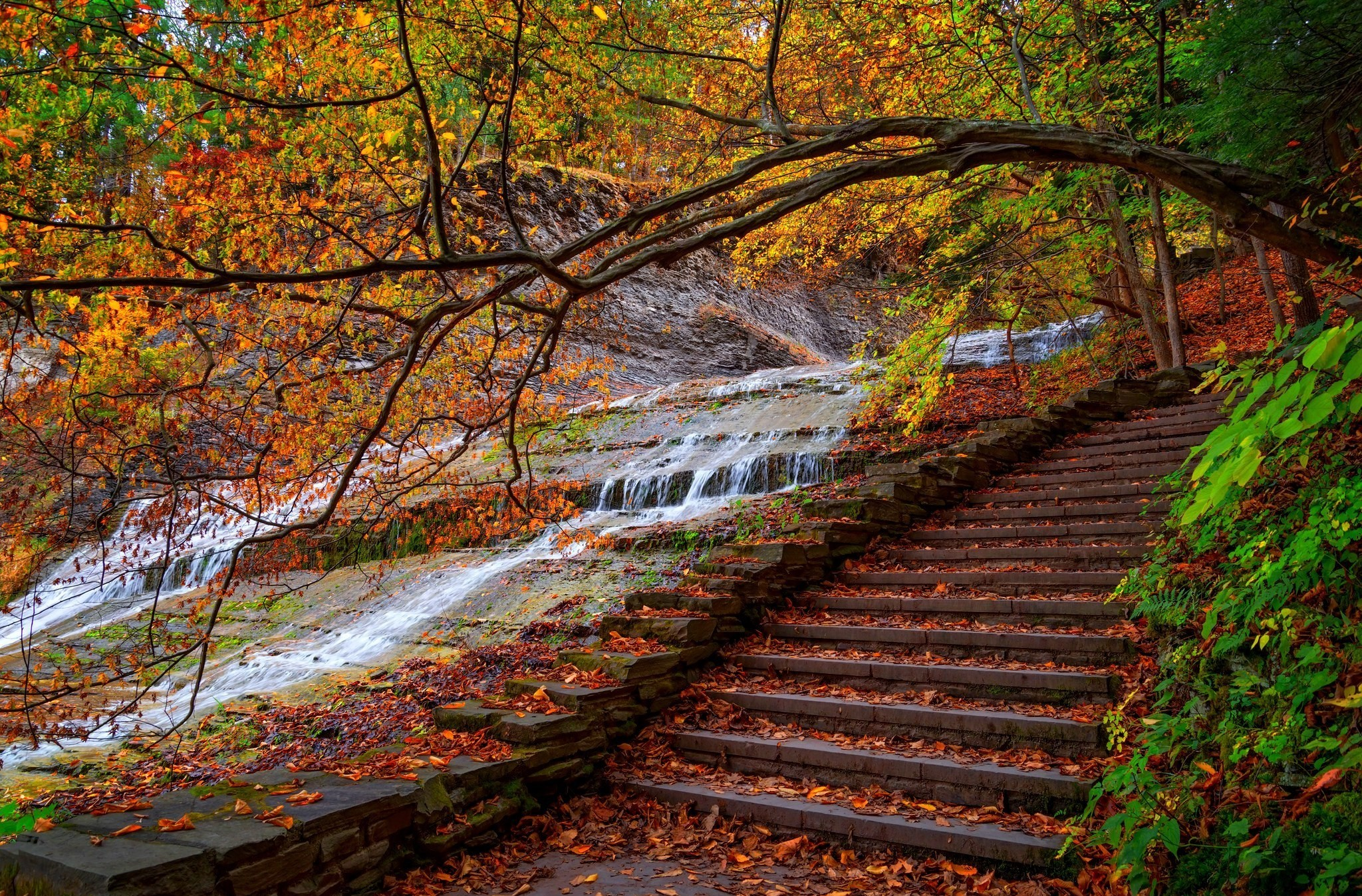 Fall Hd Wallpaper Background Image 2048x1347 Id