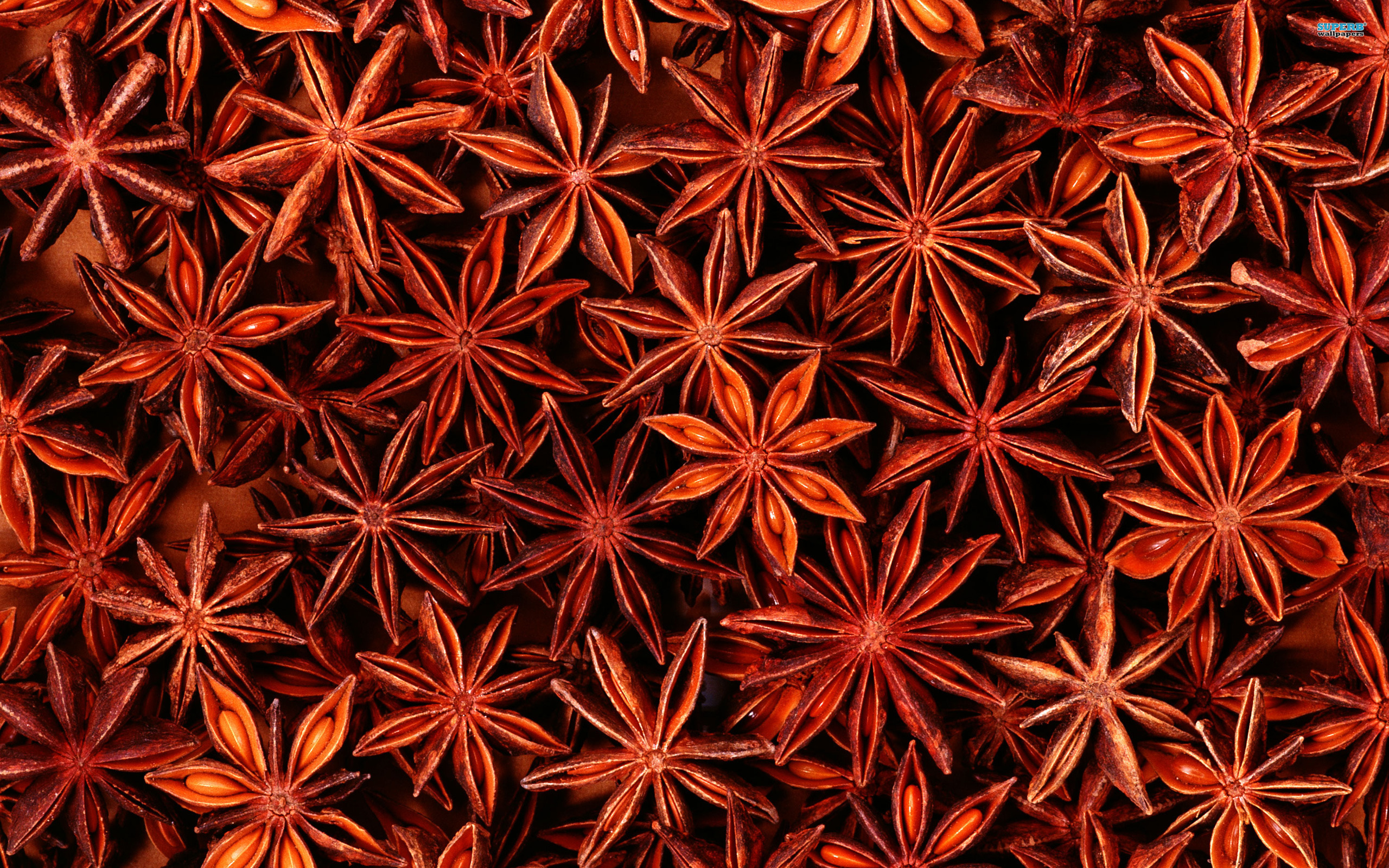 3 Star Anise Hd Wallpapers Background Images Wallpaper