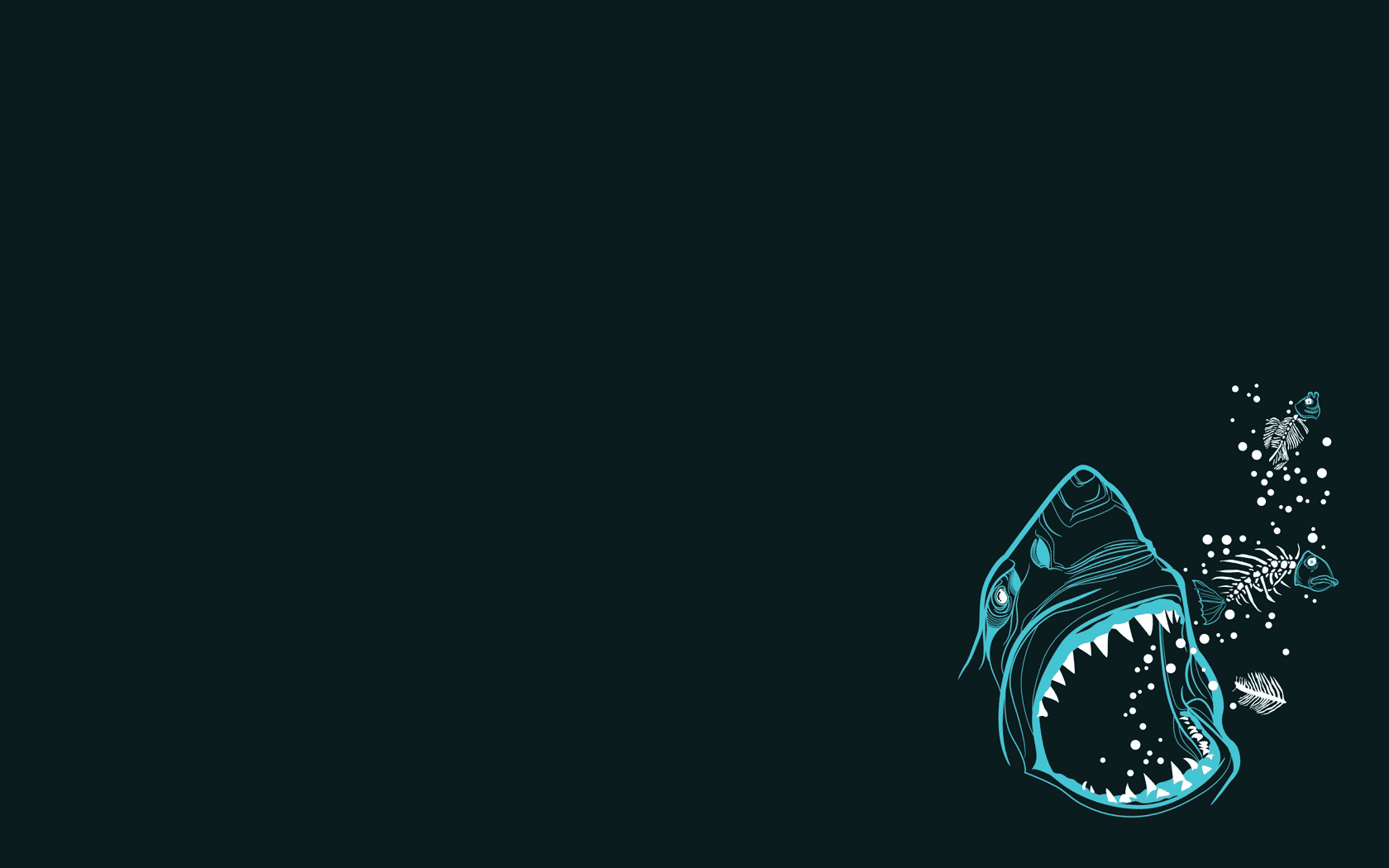 Hd Animal Wallpapers Hd Music Wallpapers: Shark Wallpaper And Background Image