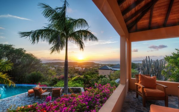 Photography Holiday Tropics Sunset Flower Palm Tree Pool Cactus Terrace HD Wallpaper | Background Image