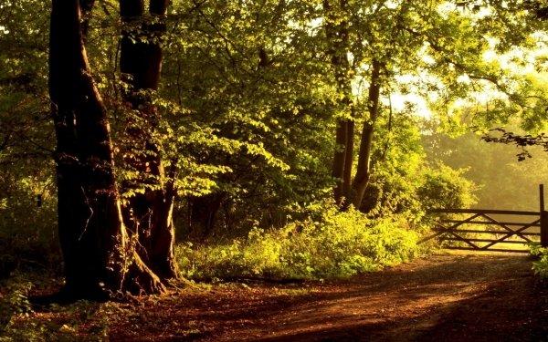 Hecho por el hombre Portress Camino Granja Árbol Fondo de pantalla HD | Fondo de Escritorio