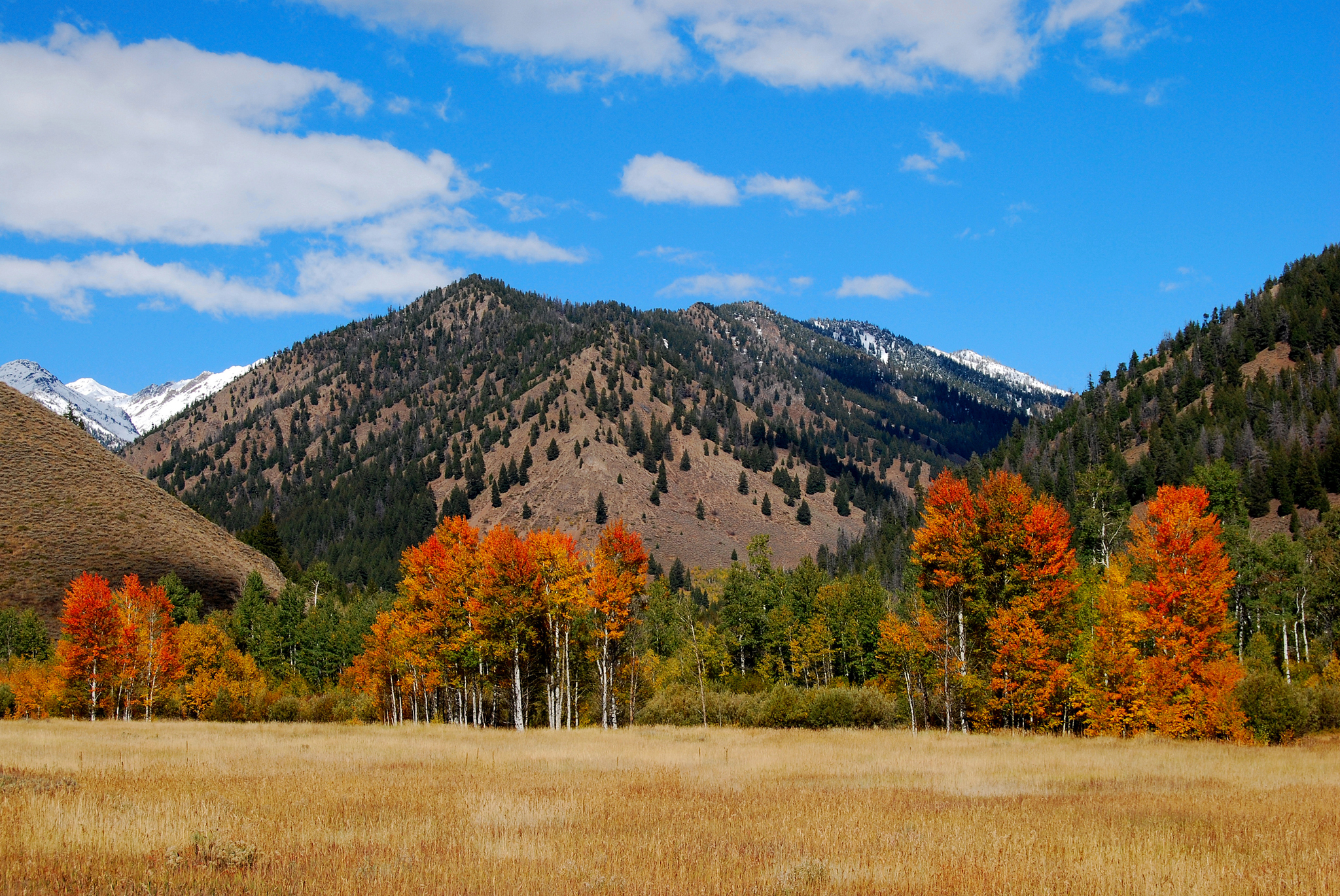 Wood Mountain Elevation : Sun valley idaho full hd wallpaper and background