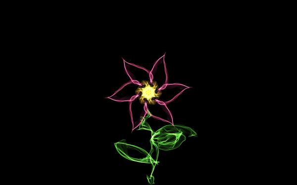 Artistic Flower Flowers Generative HD Wallpaper | Background Image