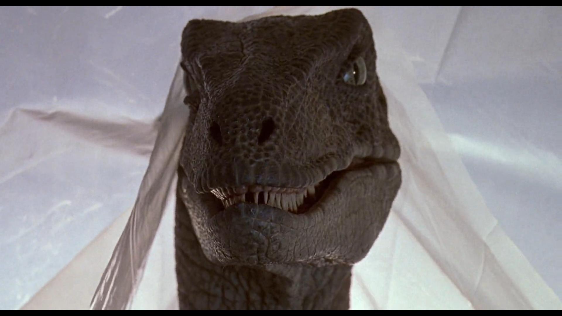Jurassic park fond d 39 cran hd arri re plan 1920x1080 id 590549 wallpaper abyss - Telecharger jurassic park 4 ...