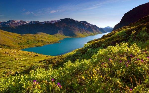 Earth Lake Lakes Mountain Norway Lake Gjende HD Wallpaper | Background Image