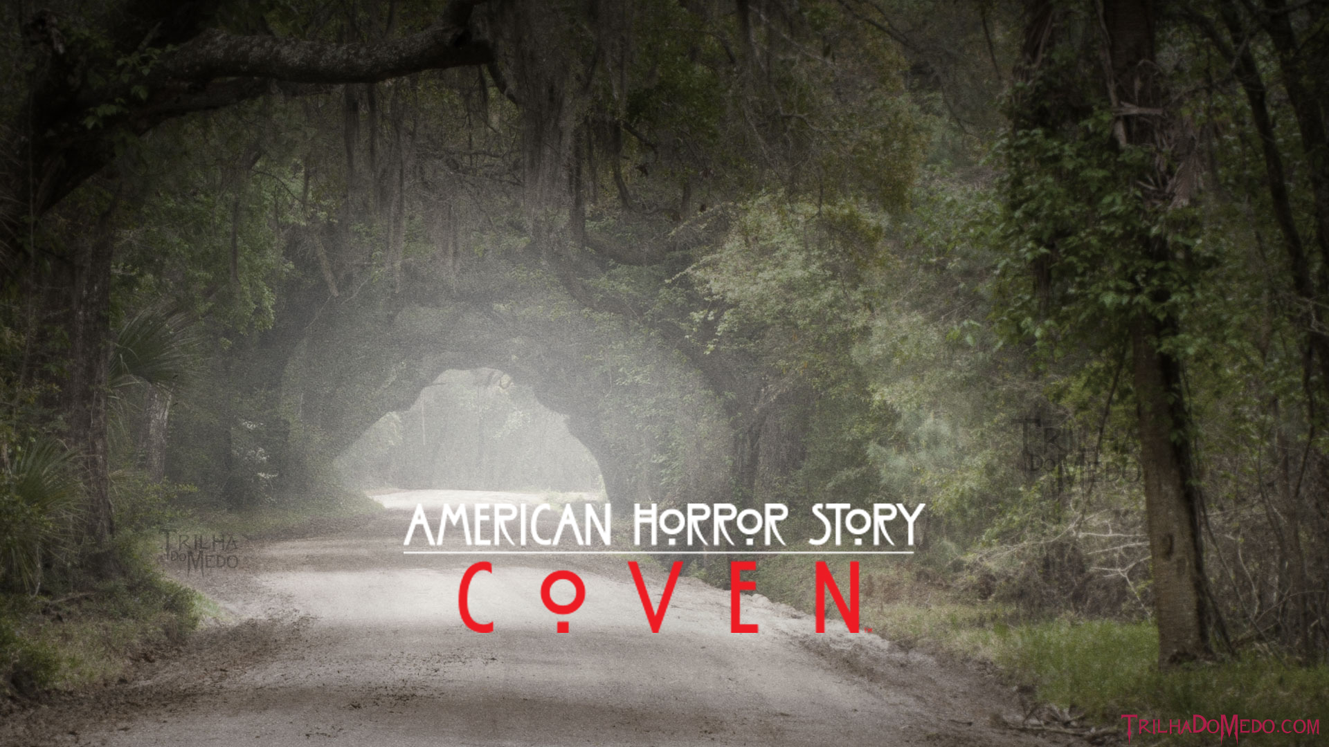 American horror story coven hd wallpaper background image 1920x1080 id 612273 wallpaper - American horror story wallpaper ...