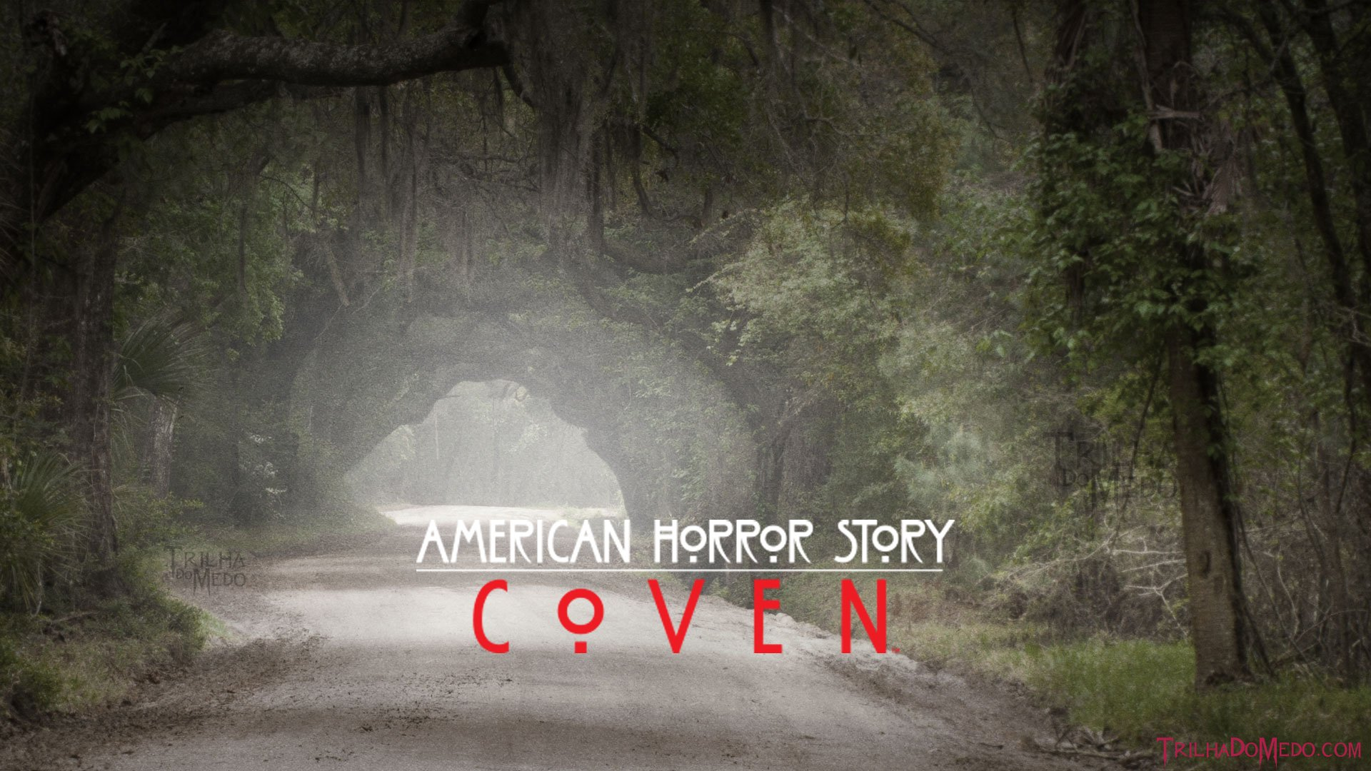 American Horror Story Coven Hd Wallpaper Background Image
