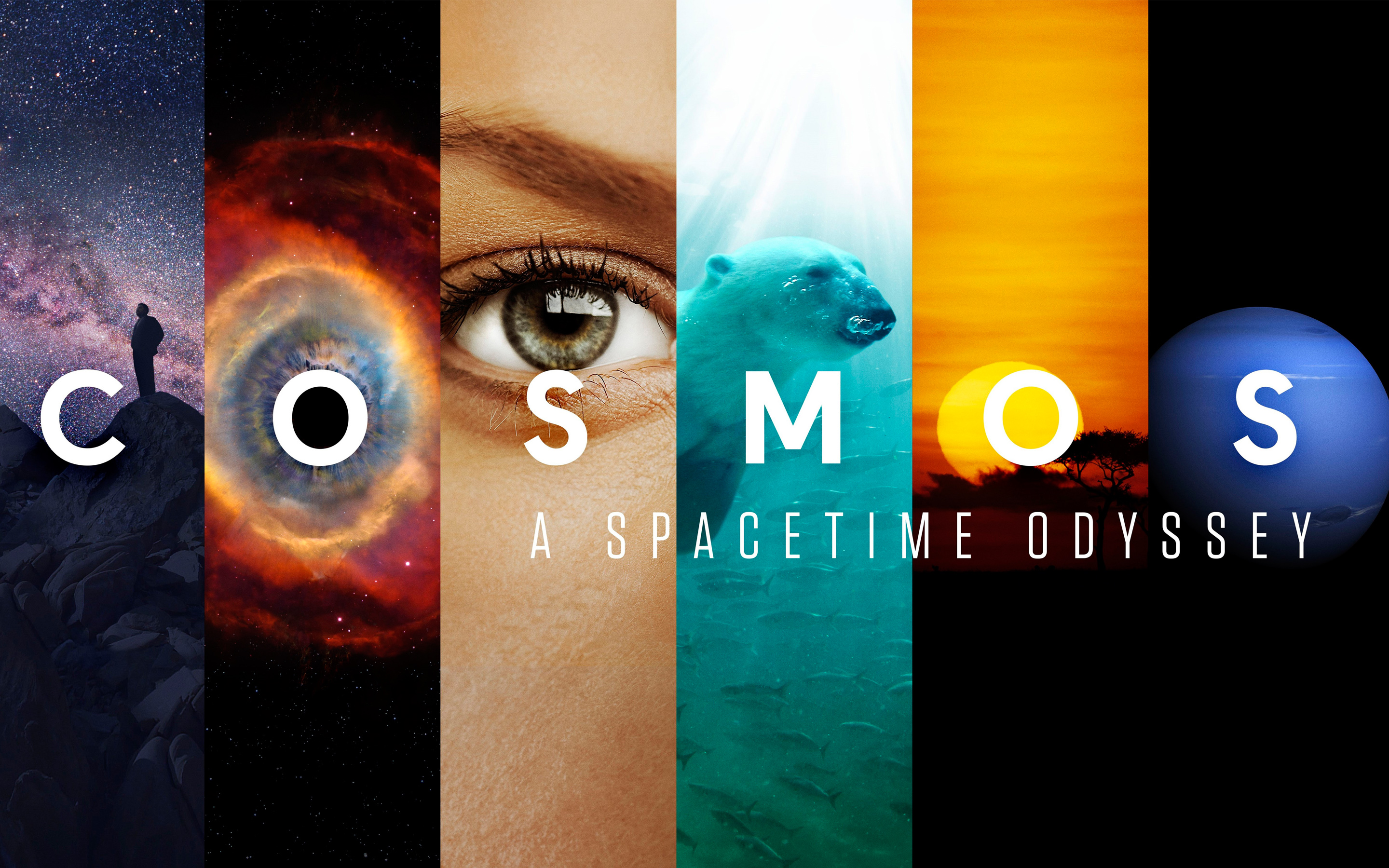 6 Cosmos A Spacetime Odyssey Hd Wallpapers Background Images