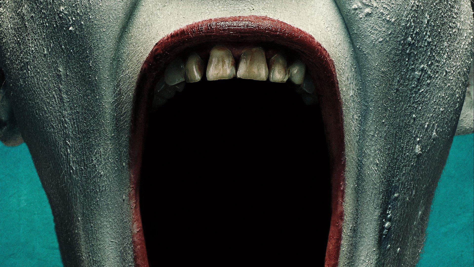 American horror story freak show hd wallpaper - Ahs wallpaper ...