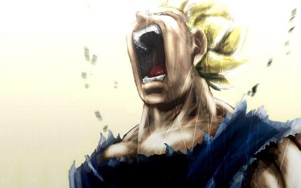 Anime Dragon Ball Z Dragon Ball Vegeta HD Wallpaper | Background Image