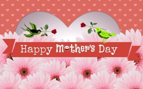 Día festivo Día de la Madre Flor Pink Flower Ave Fondo de pantalla HD | Fondo de Escritorio