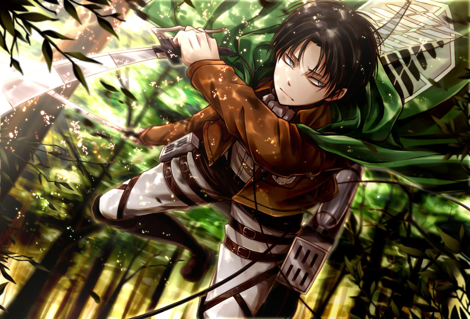 Levi Ackerman Wallpaper And Background Image 1600x1086 Id 653542 Wallpaper Abyss
