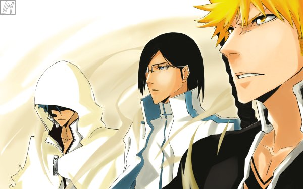 Anime Bleach Ichigo Kurosaki Grimmjow Jaegerjaquez Uryu Ishida HD Wallpaper | Background Image