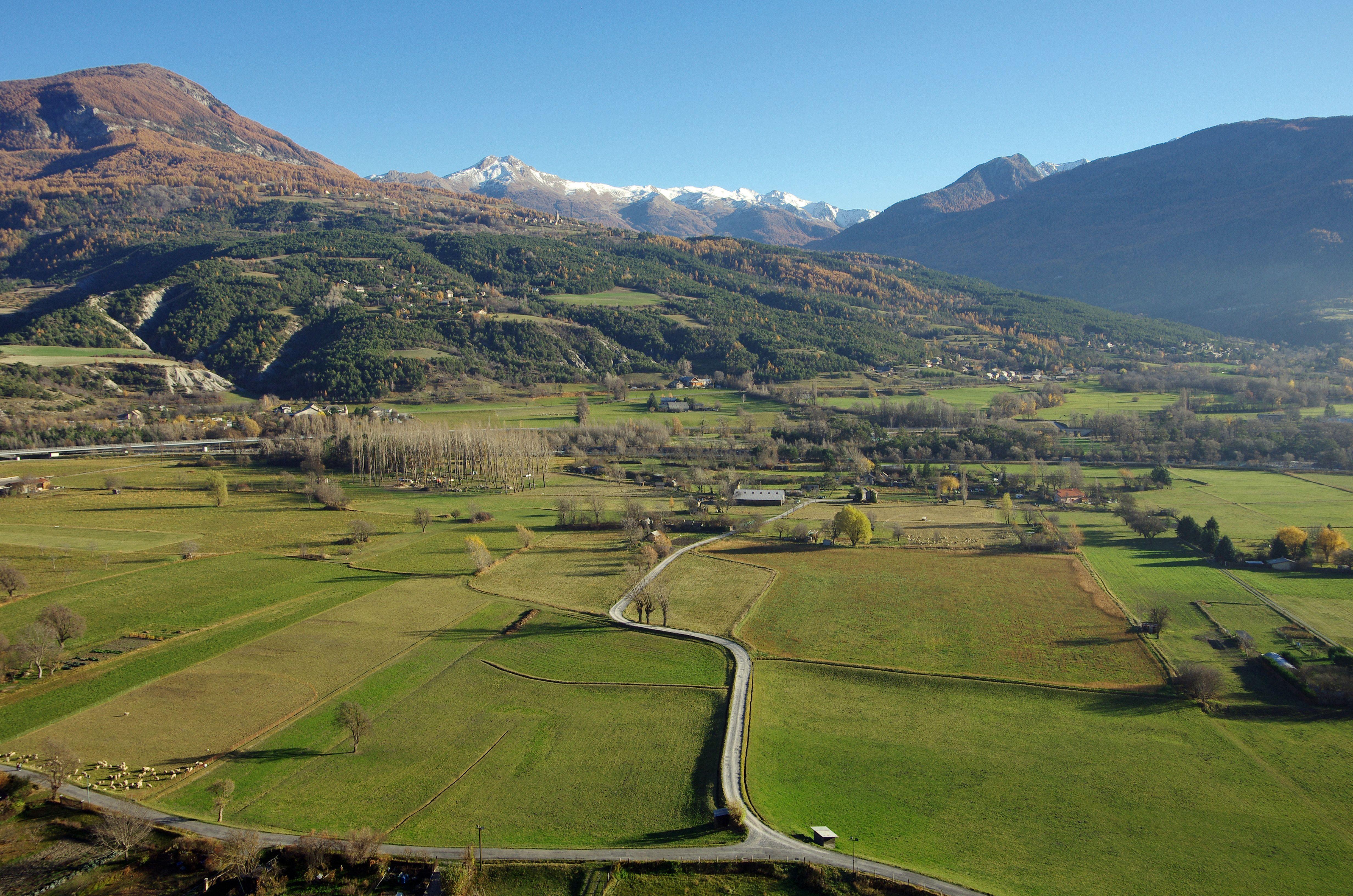 pin paysages montagne fond - photo #38