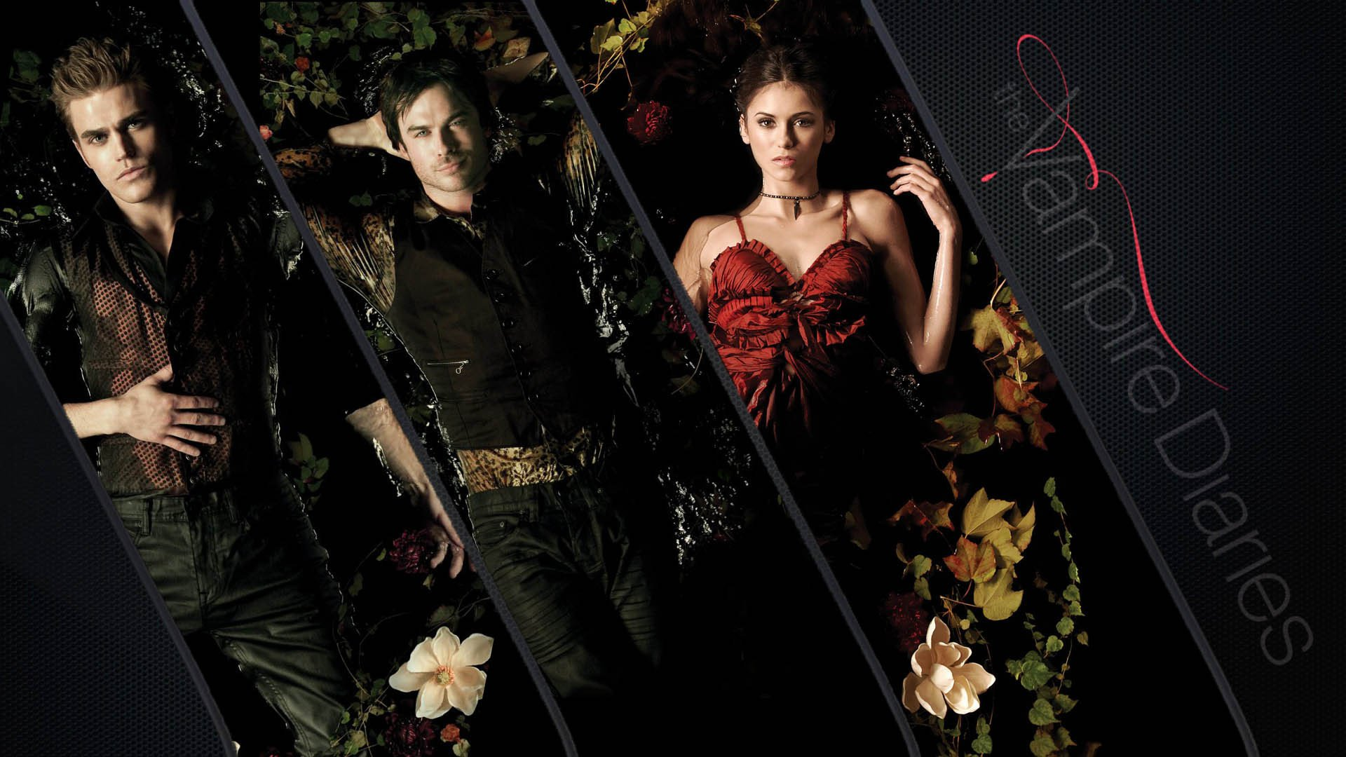 The Vampire Diaries Fondo De Pantalla Hd Fondo De
