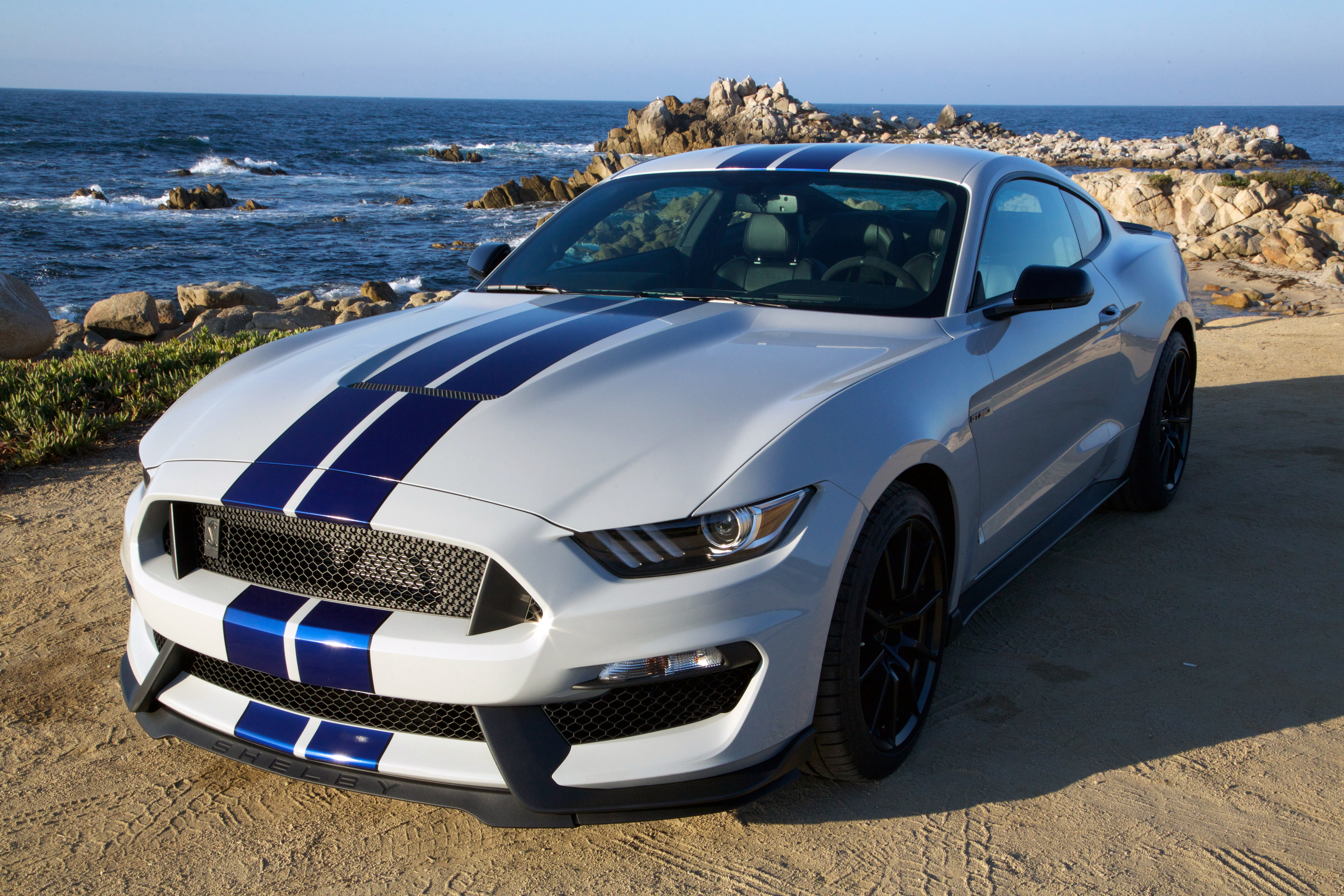 ford mustang shelby 4k ultra hd fond d 39 cran and arri re plan 4096x2731 id 676791. Black Bedroom Furniture Sets. Home Design Ideas