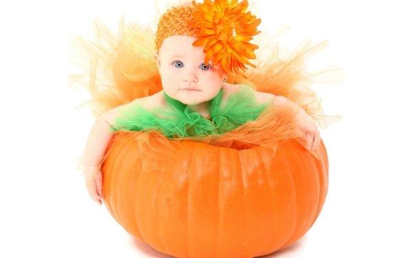 Photography Baby Cute Orange Flower Pumpkin HD Wallpaper | Background Image