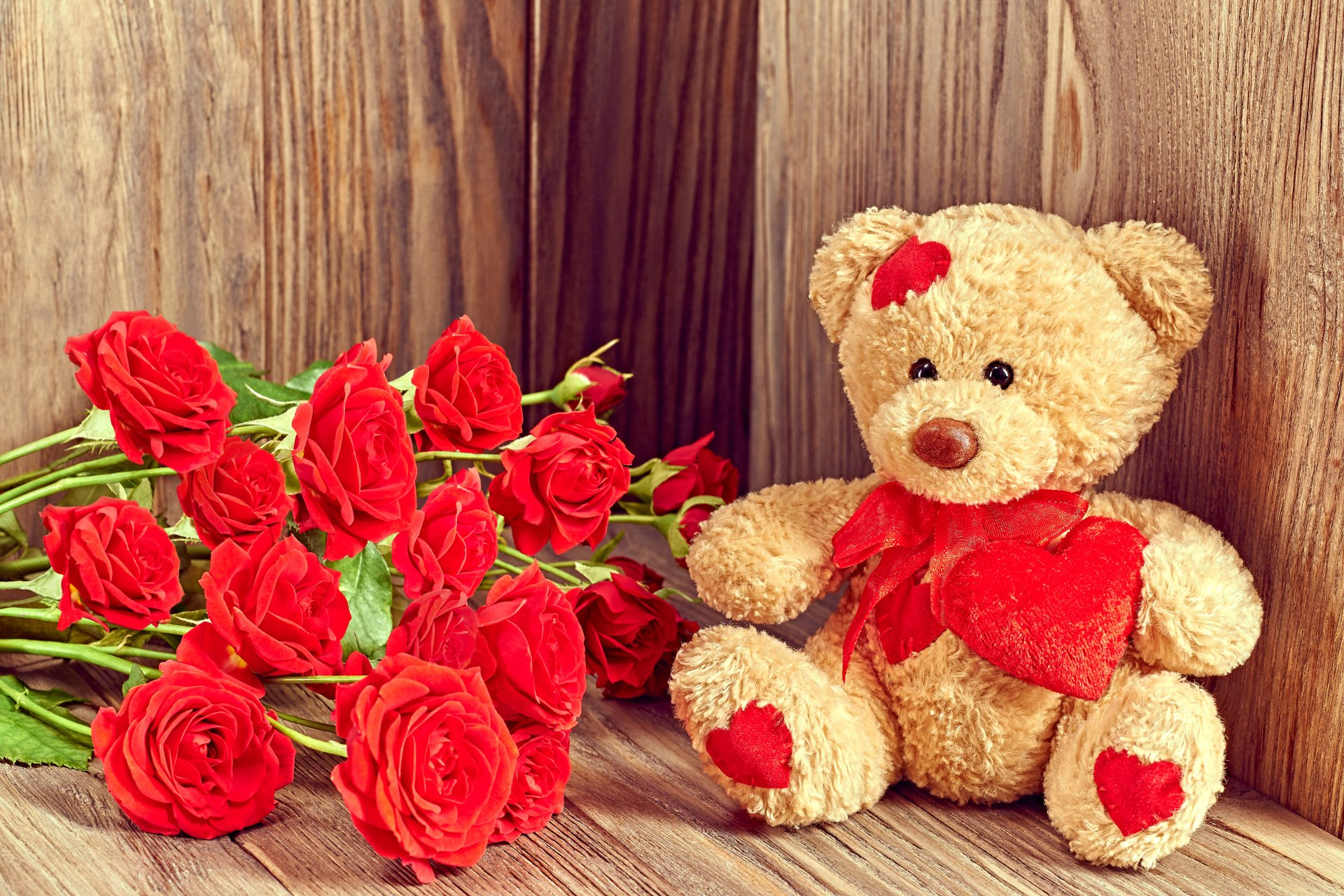 Holiday - Valentine's Day  Teddy Bear Love Flower Red Rose Rose Wallpaper